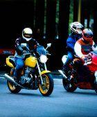 bombillas led moto homologadas